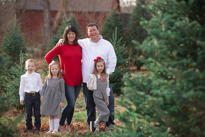 Cahill Family Holiday Mini Session Outdoor Rustic Red Barn Tree Farm Nature Fun Playful Candid Happy Cute Formal Portrait Mini Holiday Kimberly Hatch Photography Western Mass New England Photographer Mill Crane Pond Westfield Photo Studio Western Mass Mas