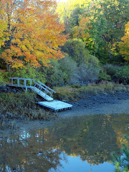 Fall foliage - York Harbor (photo by Linda Hart)