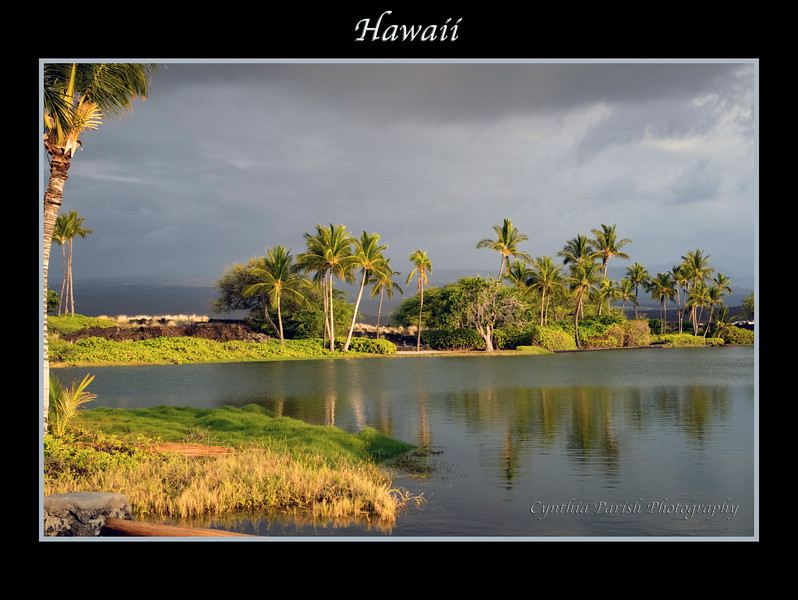 HawaiiBeach_clp_664A9887.jpg