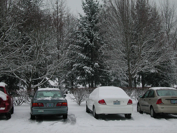 Super Snow Day at Intel CO5, Beaverton, OR 2007/01/16