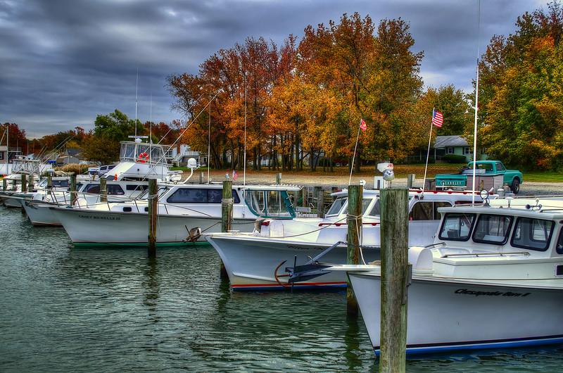 fishing trip - Kent Island Marina and Foliage(p).jpg