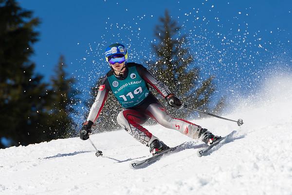 2020 - Grant Ski Team