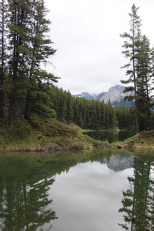 Day 5 - Moose Loop trail