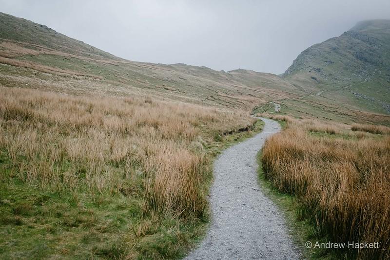 slipperymouse-ranger-path-27.jpg
