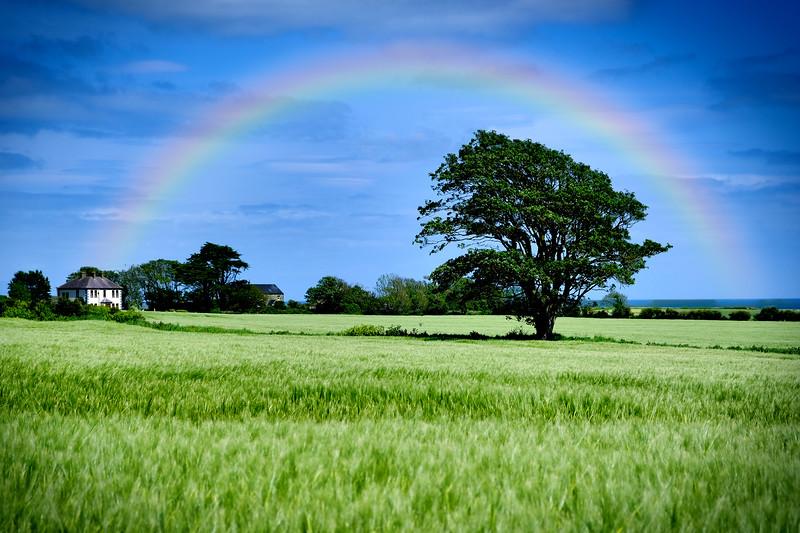 Rainbow Over Port.jpg