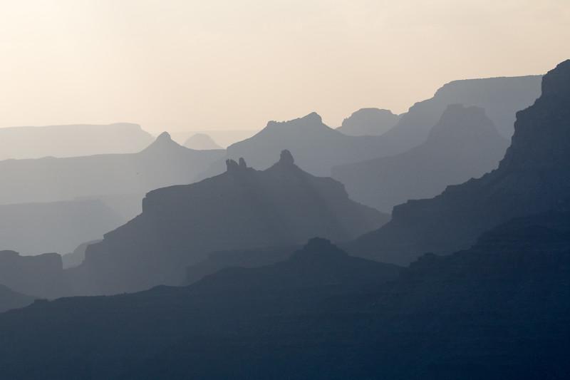 Grand Canyon National Park / Bearizona / Arizona