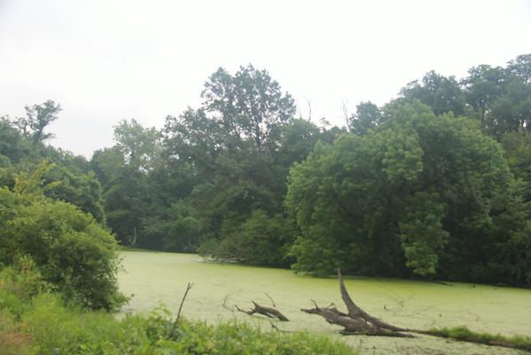 Anderson's Pond - Collinsville, IL