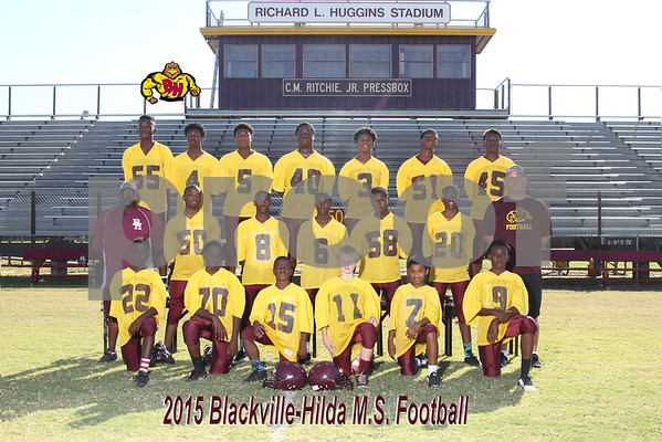 2015 MS Football