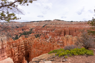 Bryce Canyon National Park 2021