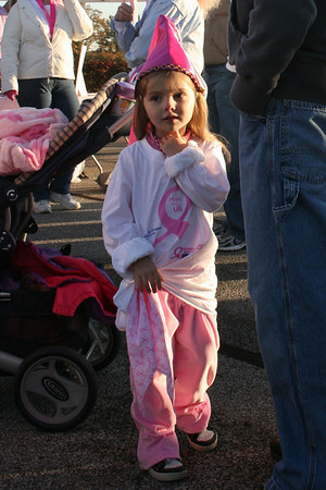 2008 Making Strides Against Breast Cancer III