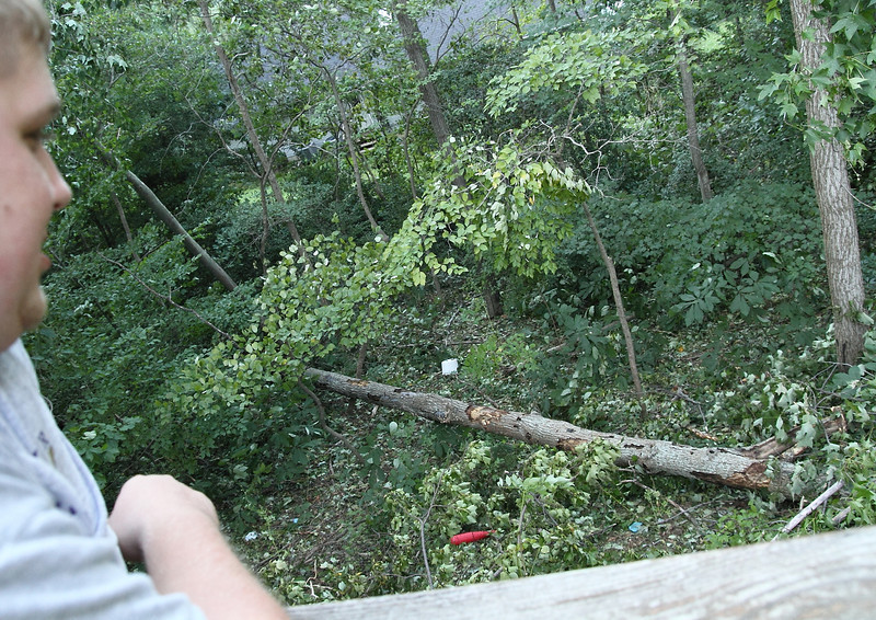 Then the Shewel's tree that used to be standing directly out their back deck door.   Oh well,  we ALL have some good firewood for this Winter.  :D
