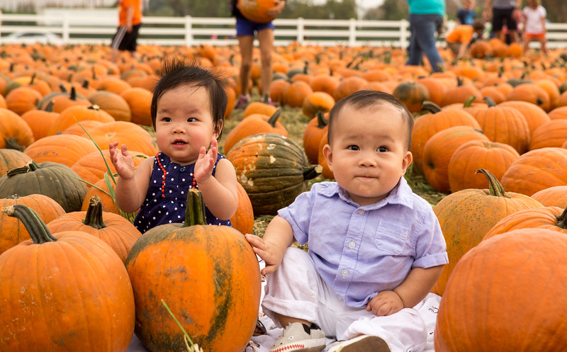 oliver_ella_pumpkin_patch-24.jpg