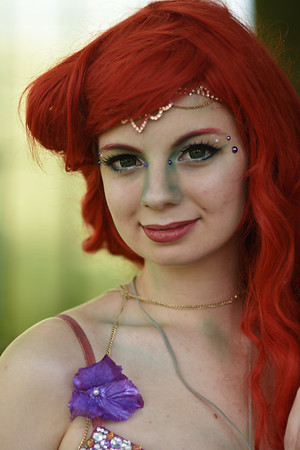 Elftopia Fantasy Fair 2016