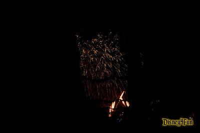 Disneyland November 2008