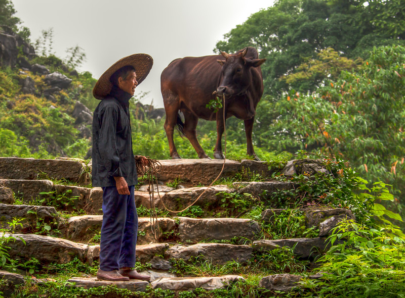2012 china fisherman & old man w- cow-13.jpg