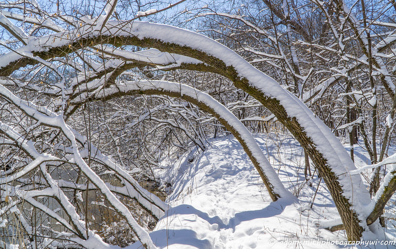 Spring_Snow_Wisconsin-1.jpg