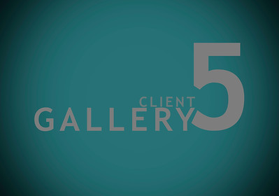 Client Gallery 5