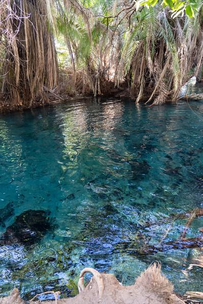 Kikuletwa Hot Springs in Moshi