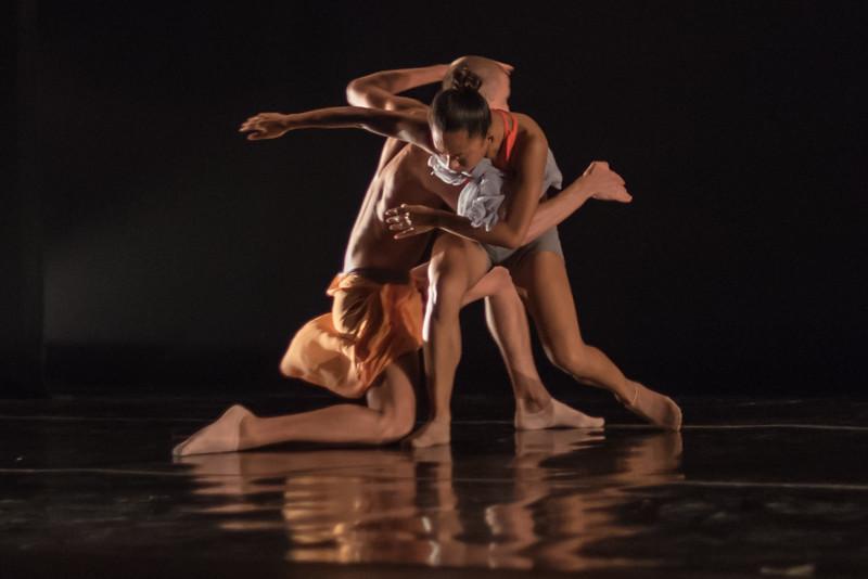 170714 New Dances 2017 (Photo by Johnny Nevin)_1826.jpg