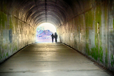The tunnel at Hawk Hill