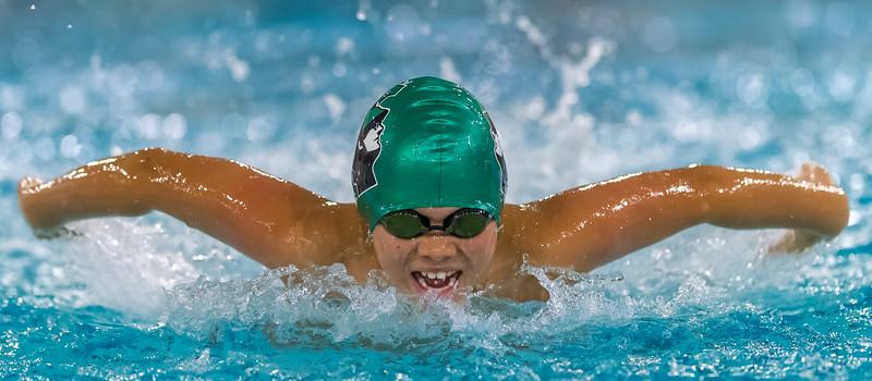 SPORTDAD_Aquafest_swimming_4751.jpg
