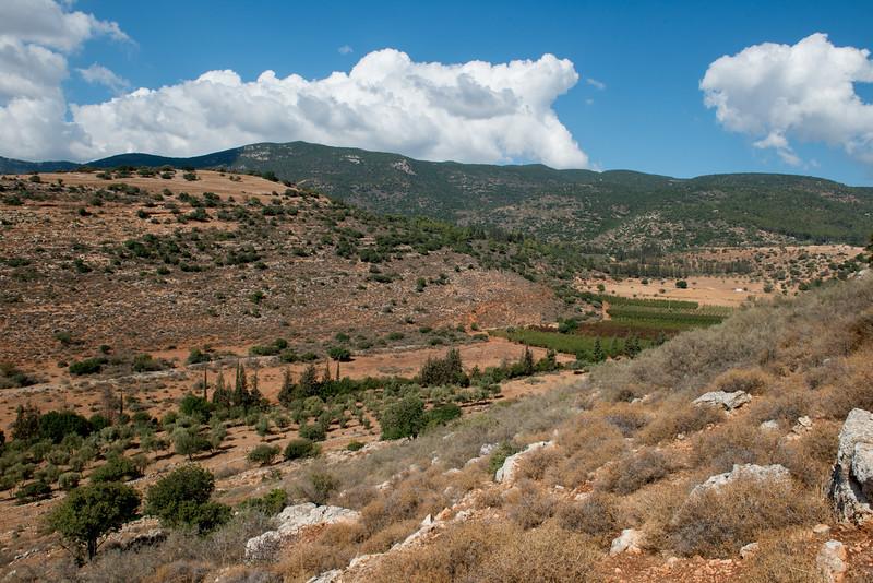 Israel-7348.jpg
