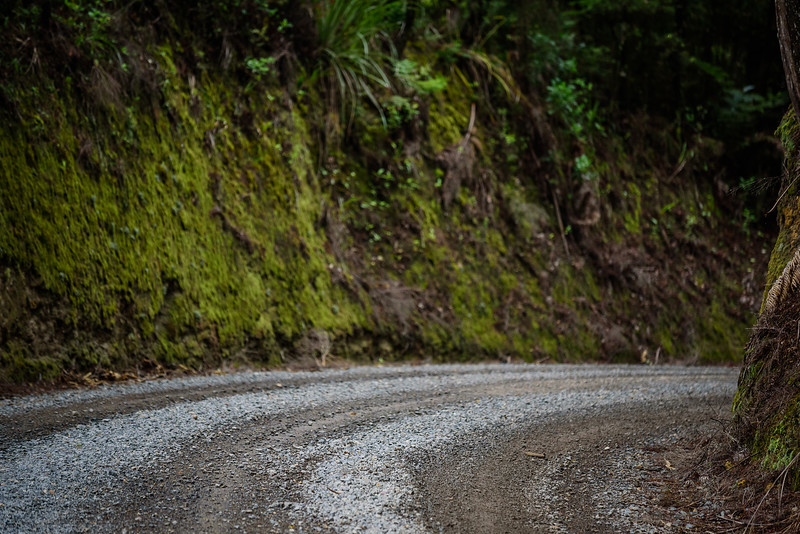 2018 KTM New Zealand Adventure Rallye - Northland (460).jpg