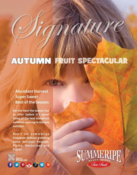 Autumn Spectacular Poster 2014.jpg