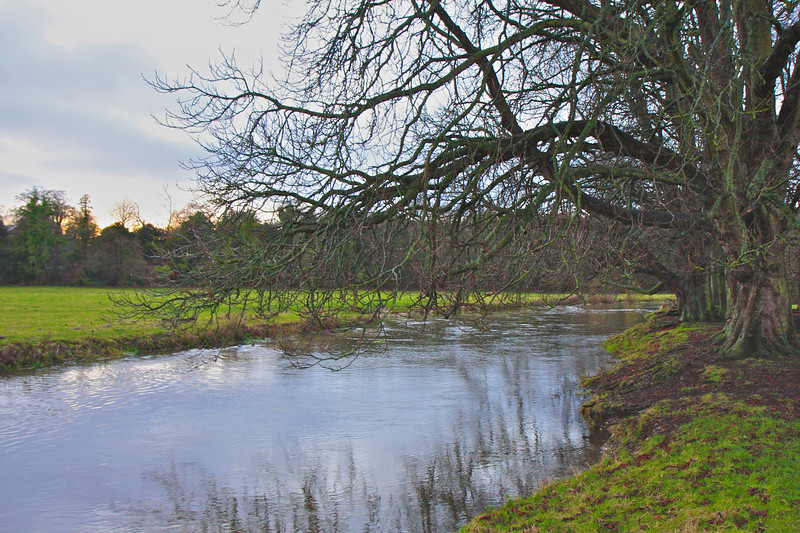 River Avon at Amesbury