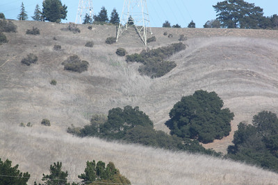 Drought parched California hills