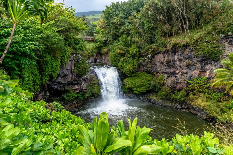 Maui-2435-Edit.jpg
