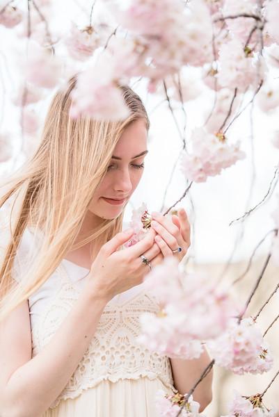 Cherry Blossoms (83 of 182).jpg