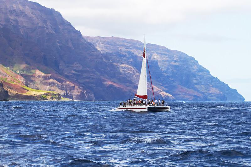 Hawaii865.jpg