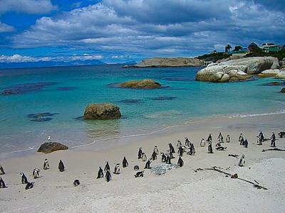 Cape Town - RTW 2