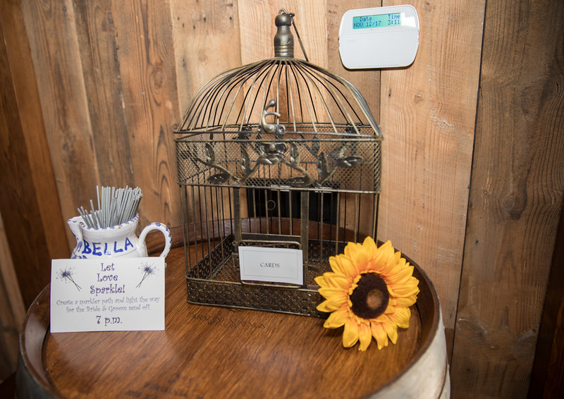 Bird cage for cards.jpg