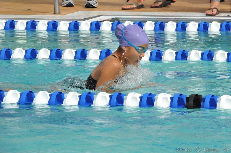 2015-06-20_HAC_SwimMeet_v_Westminster@HAC_HockessinDE_101.jpg