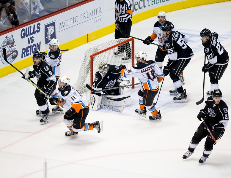 Professional Hockey