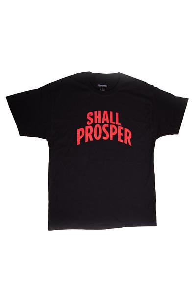 Shall Prosper Black T-shirt 4.jpg