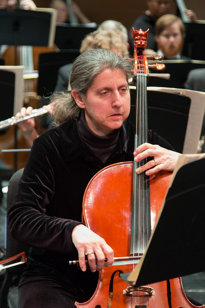 Sheryl Friedlander -- Symphony of the Potomac at the Cultural Arts Center, Silver Spring, MD, February 2018.