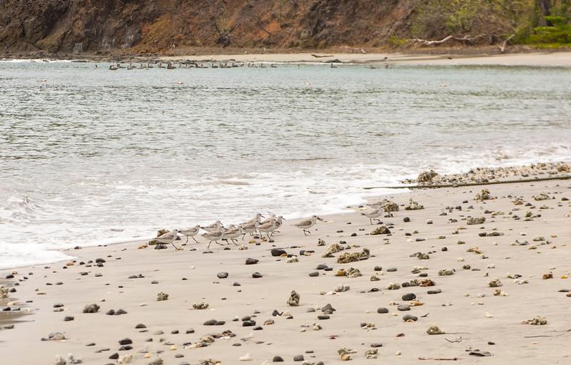 Costa Rica 17.jpg