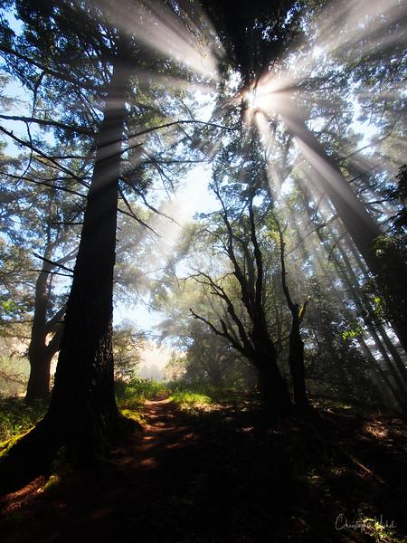 20100710_hiking_7939.jpg