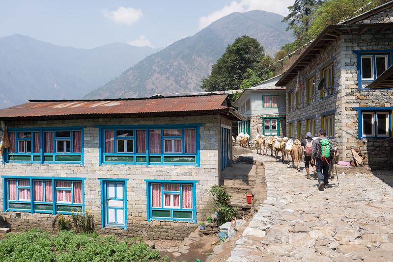 Nepal 178(20150415-DSCF2348)