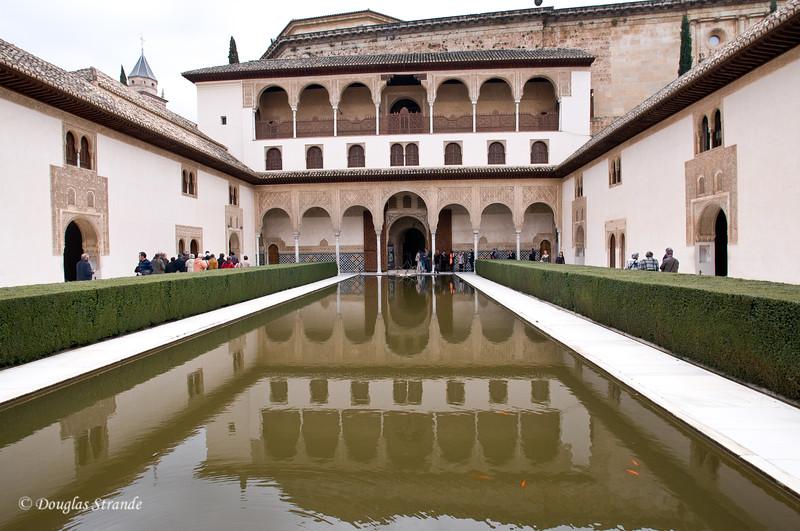 Fri 3/11 at La Alhambra in Grenada: reflecting pool