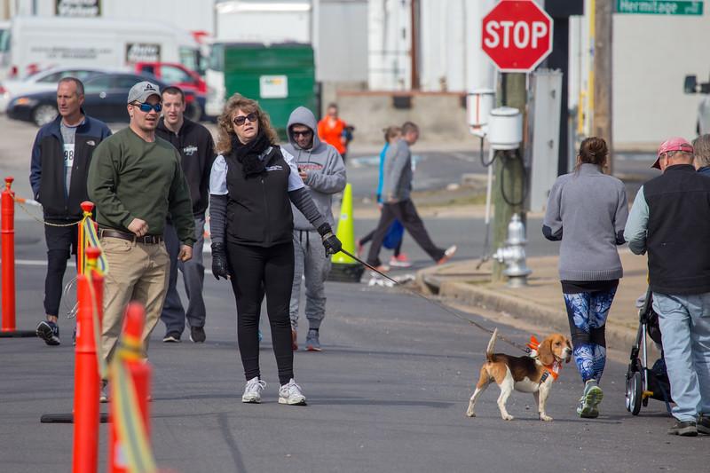 Richmond Spca Dog Jog 2018-631.jpg