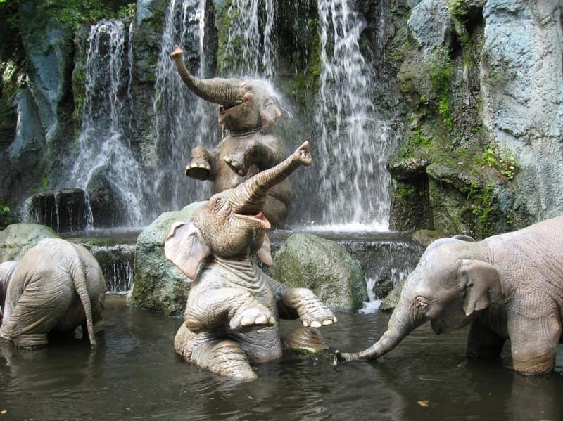 elephantsjunglecruise-1024x767.jpg