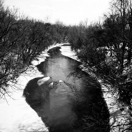 Flint Black and White Film