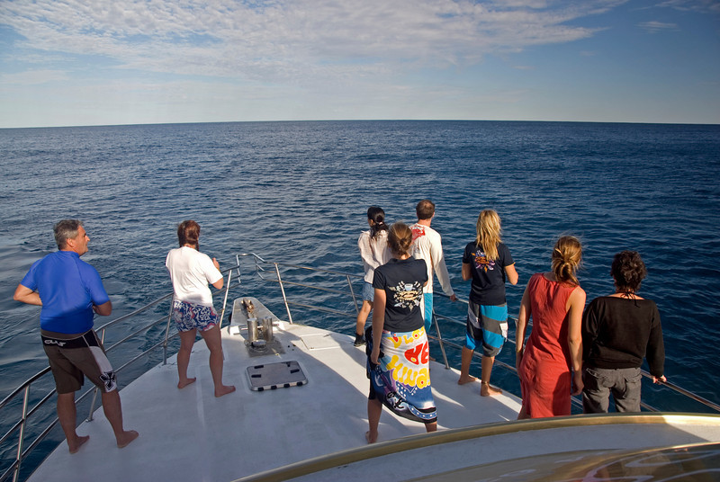 Whale Watching - Exmouth, Western Australia