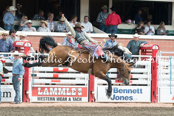 Calgary Stampede - Day 7