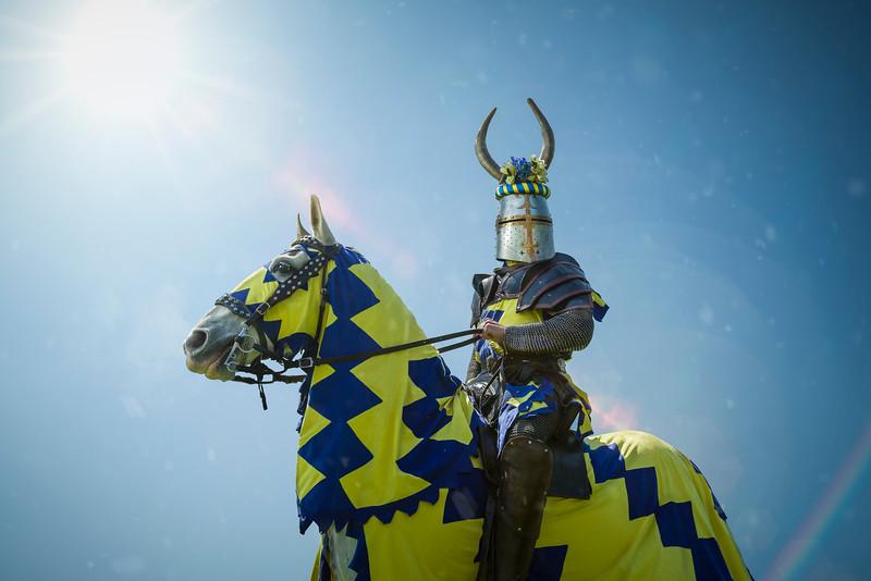 The Knights Royal