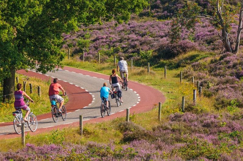 bike lanes in veluwe national park